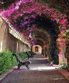 Valencia, Spain - Passage at Jardín de Monforte. On one side of the  Royal  Gardens (Jardines del Real which used to be part of the Royal Palace, or Viveros) lies the pretty jardines de Monforte, which is fronted by the river Turia garden, which spans the XVI century royal bridge.    Photo by Victor Ferrand