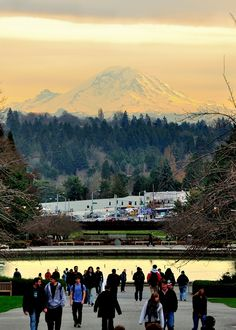 An incredible view of Mount Rainier from campus. #youW