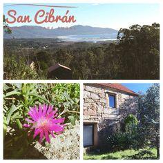 San Cibran Rural.  #cottage #casarural #travel #decoracion #sancibranrural Cottage, San, Plants, Travel, Rural House, Casa De Campo, Cottages, Viajes, Cabin