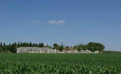 Richelieu, Tours, Touraine