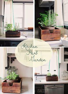 Anchor & Sail Kitchen Herb Garden