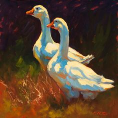 Huey & Dewey by Cheri Christensen Oil ~ 12 x Colorful, vibrant oil painting of two white ducks. Art And Illustration, Illustrations, Farm Paintings, Animal Paintings, Indian Paintings, Chicken Art, Chicken Painting, Painting & Drawing, Watercolor Paintings