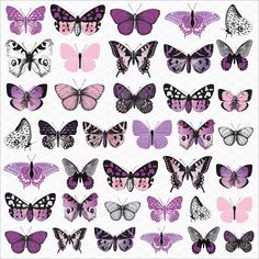 Kaisercraft Violet Crush Cardstock Stickers Butterflies