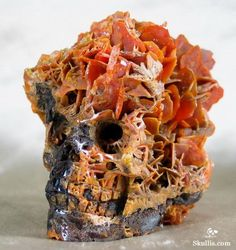 A collection would not be complete without this one. Minerals And Gemstones, Crystals Minerals, Rocks And Minerals, Stones And Crystals, Skull Decor, Skull Art, Human Skull, Crane, Beautiful Rocks