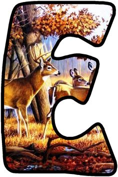 Alphabet And Numbers, Fence, Deer, Moose Art, How To Look Better, Things To Come, Life, Alphabet, Decorated Letters