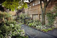 Dark concrete in a garden designed by Adam Shepard