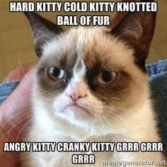 Grumpy Cat  - Hard kitty cold kitty knotted ball of fur Angry kitty cranky kitty grrr grrr grrr