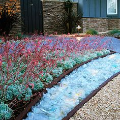Tumbled glass mulch, custom-made from recycled Chardonnay bottles, which conceals an LED light cable buried beneath. Decomposed granite underscores the bright glass front, while Echeveria elegans blooms in back.