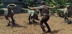 """Chris Pratt, de Jurassic World e Guardiões da Galáxia, visitou o Hospital Infantil Our Lady of the Lake em Baton Rouge, Louisiana no sul dos Estados Unidos. Ao se encontrar com a equipe dos hospital e com os jovens pacientes, ele distribui brindes do filme e ensinou algumas crianças a sua """"pose de treinar raptors"""" …"""