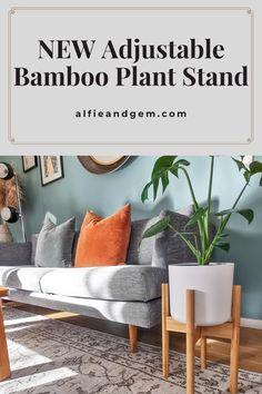 Plant Stands #plant #plantstand #interiorplant #houseplant Bamboo Plants, Indoor Planters, Interior Plants, House Plants, Furniture, Home Decor, Indoor Plants, Home Plants, Indoor House Plants