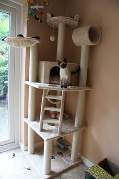 Cats Toys Ideas - Corner Cat Tower Plans - Ideal toys for small cats Cat Tower Plans, Diy Cat Tower, Cat Towers, Ideal Toys, Cat Playground, Cat Room, Cat Condo, Small Cat, Animal Projects