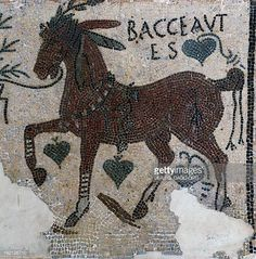 Winning racehorse named Bacceatus detail of a mosaic uncovered in Carthage Tunisia Roman Civilisation 3rd century Tunis Musée National Du Bardo