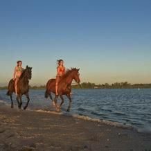 Horse backing riding on the beach in Florida after the honey moon :)))