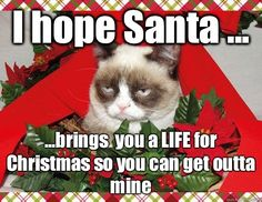 Merry christmas from grumpy cat. grumpy cat speaks the truth. Merry Christmas Meme, Grumpy Cat Christmas, Funny Christmas Sweaters, Noel Christmas, Christmas Music, Christmas Humor, Christmas Images, Christmas Quotes, Christmas Stuff