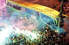 Campeão!!! Copa do Brasil 2015