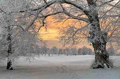 Dawn in the Snow, Aedan Coffey, Kilkenny Ireland