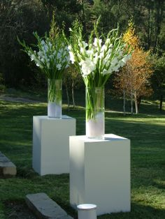 Gladiolii on plinths to mark marquee entry Fiesta Decorations, Outdoor Wedding Decorations, Wedding Wreaths, Ceremony Decorations, Flower Decorations, Wedding Centerpieces, Wedding Ceremony Flowers, Floral Wedding, Wedding Colors