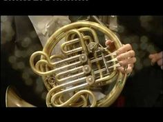 Tchaikovsky's 5th Symphony french horn solo      Filarmonica della Scala  Danilo Stagni, horn soloist