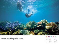 EL MEJOR ALL INCLUSIVE AL CARIBE. República Dominicana tiene todo para que tú y tus amigos, tengan unas vacaciones llenas de diversión disfrutando de su entorno natural. Aquí encontrarán lugares que están habilitados para que expertos les enseñen cómo hacer snorkeling y así, puedan gozar de sus cálidas aguas y apreciar especies como tiburones y peces raya. En Booking Hello tenemos las mejores tarifas en packs all inclusive, para comenzar a planear su viaje. #bookinghello