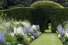 Topiary Design with assorted flowers and manicured lawn including continuous open arch boxwood doorways