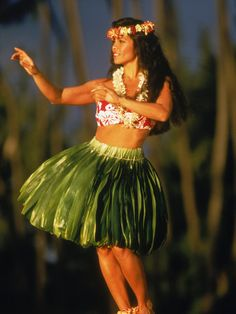 Hawaiian Hula Dancer (Like @ Hawaiian Inn in Daytona Beach we saw so many time growing up!)