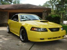 Yellow Mustang Cobra Convertible - her girl toy 2002 Ford Mustang Gt, Mustang Cobra, My Dream Car, Dream Cars, Yellow Mustang, Mustang Parts, Mustang Convertible, Car Goals, My Ride