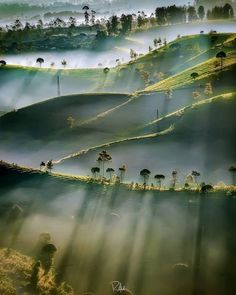 Morning sunshine light painting itself across the landscape 🍃 Cukul Pangalengan, Indonesia. Photo by 🌞 Good Vibes Lifestyle 🌞 The best self help book 📓 of the last several 👌. Beautiful World, Beautiful Places, Beautiful Pictures, Landscape Photography, Nature Photography, Sunrise Photography, Photography Tips, Fotografia Macro, Photos Voyages