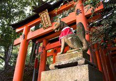 京都 - 伏見稲荷大社 Fushimi Inari-taisya Kyoto