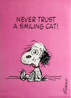 Original Vintage Posters -> Advertising Posters -> Snoopy Schulz Never Trust A Smiling Cat - AntikBar