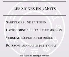 Les Signes du Zodiaque en 3 mots