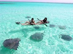 San Andres Island, Colombia, Glass boat. Super cool.