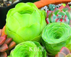Loss Promotion!10 PCS A Pack Home Garden Plant Sempervivum Mix Succulent Seeds Rare flower seeds garden flowers for room,#4B6JKH #Affiliate