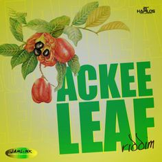Ackee Leaf Riddim is a brand new reggae juggling from Jamlink Recording which features Big Pop, Incline and more.
