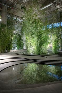 This picture is urban sustainable living Indoor Naturescape Stonescape with green bamboo by Kengo Kuma.