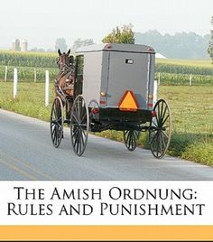 Amish - The Ordnung is a set of rules for Amish living. Ordnung is the German word for order, discipline, rule, arrangement, organization, or system. Because the Amish have no central church government, each assembly is autonomous and is its own governing authority. Thus, every local church maintains an individual set of rules, adhering to its own Ordnung, which may vary from district to district as each community administers its own guidelines.