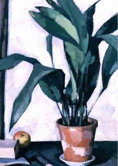 Aspidistra by Samuel John Peploe Aberdeen Art Gallery & Museums Date painted: 1927 Oil on canvas, x cm Collection: Aberdeen Art Gallery & Museums Painting Still Life, Still Life Art, Aberdeen Art Gallery, Guache, Art Uk, Arte Floral, Painting Inspiration, Painting & Drawing, Flower Art