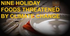 Nine Holiday Foods Threatened by Climate Change | Climate Reality
