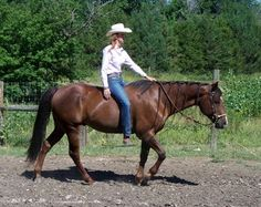 Bareback Balance for Barrel Racers-this article could not be more true!!!! Just cantered bareback on my horse and requires TONS of balance and no tension....ride bareback to become a better rider!