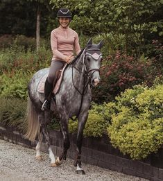 Buy A Horse, English Riding, Equestrian Style, Horse Riding, Dressage, Archive, Horses, Random, Outfit