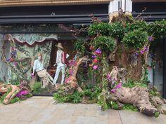 Chelsea flower show window