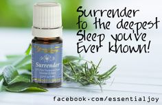 Surrender to the Deepest Sleep You've Ever Known! My husband was shocked at the results when I first tried my new Young Living Essential Oil Surrender! He was having trouble shutting his mind off ...