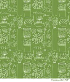 Basic line drawing class by LIsa Congdon (including one lesson all about drawing succulents!)