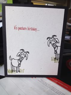 Stampin up from the herd