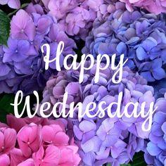 Good morning my beautiful girls. Happy Wednesday :)