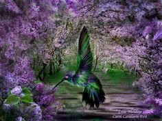 lilacs and birds | ... Of Flowers Series: Lilac Meadow With Humming Bird Digital Art Painting