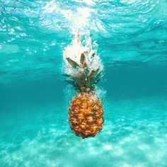 Who knew pineapples 🍍 can swim? That is if haven't seen spongebob😅😂
