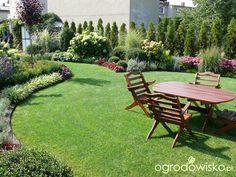 Organic Gardening Classes Near Me Outdoor Privacy, Backyard Privacy, Backyard Landscaping, Back Gardens, Small Gardens, Garden Forum, Rogers Gardens, Small Garden Design, Landscaping With Rocks