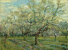 """Vincent Van Gogh, The White Orchard oil on canvas 23 2/3"""" x 31 3/4""""1888, via The Art Room"""