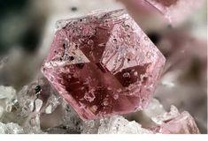 Pezzottaite : Cs(Be2Li)Al2(Si6O18) Sakavalana mine, Ambatovita, Mandrosonoro Commune, Ambatofinandrahana District, Amoron'i