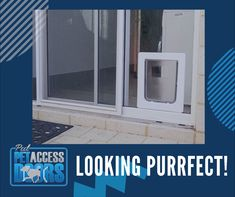 Give your pets their own access into and outside your home! We are also reachable through this number 📞 08 6149 1299    #petdoors #petdoorsperth #petdoorsmandurah #perthglass #petdoorsperth #dgg Window Replacement, Pet Door, Glass Repair, Western Australia, Perth, Your Pet, Dog Cat, Home Appliances, Number